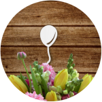 Топперы для капкейков и пирожных оптом