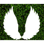 Декоративные крылья для фотозоны